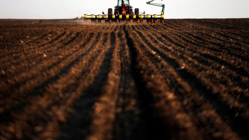 'Terraton Initiative': Going Back To Soil To Reduce Carbon Imprint